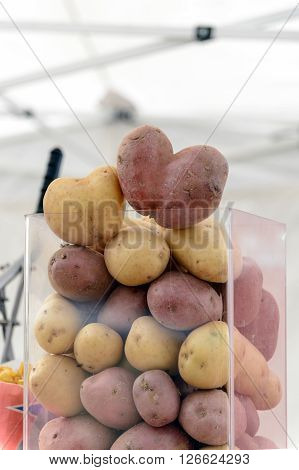 Container with fresh potatoes ready to be cooked in the fryer.