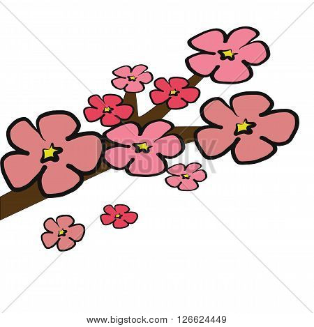 Cherry Blossom tree branch illustration with pink 5 petals isolated on white background