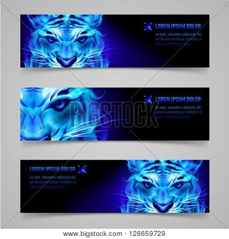 Set of banners with mystic tiger in blue flame