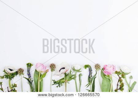 Pink tulips white anemones pink cloves and white buttercups lying on white background in a row