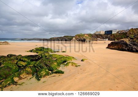 Newquay North Cornwall UK Towan beach with green seaweed