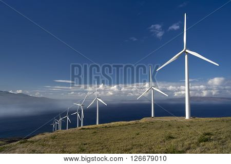Wind turbines on the island of Maui, Hawaii, USA ** Note: Visible grain at 100%, best at smaller sizes