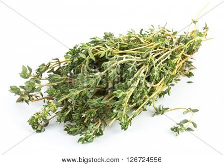thyme isolated on white