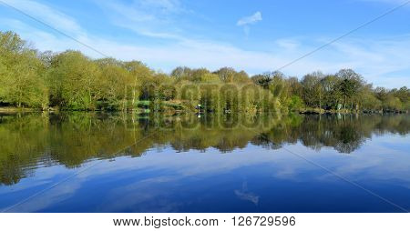 Forest reflected on a lake in Trent Park London