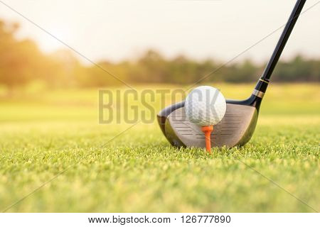 Golf club and ball in grass with sunlight