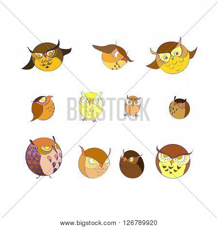 set of eleven circle color cute  owls
