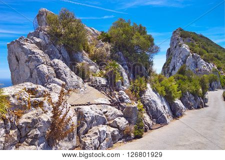 Walking trails on Gibraltar Rock in summer.