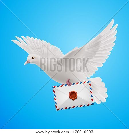 Flying Dove with letter on blue background