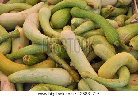 Zucchini Aka Courgettes Vegetables