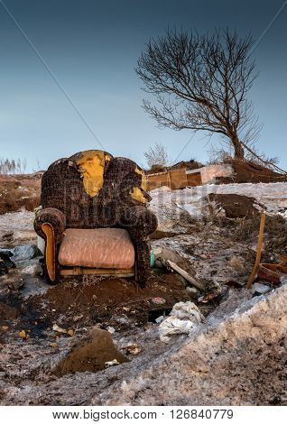 Abandoned Armchair And Leaning Tree Colour