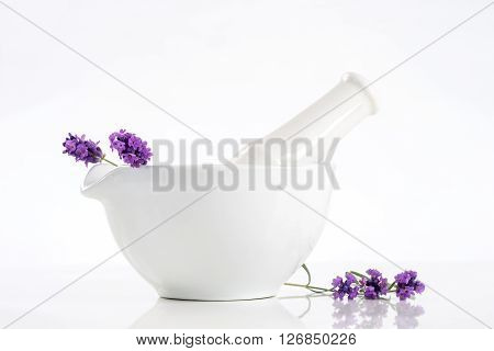 Lavender herb leaves in an ceramic mortar with pestle over white background.