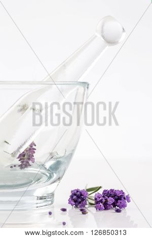 Herbal medicine concept of lavender flowers in glass mortar