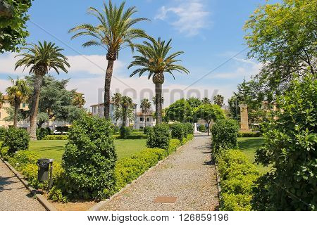 Vada Italy - June 29 2015: Empty alley in the city park of small maritime town Vada on the coast of the Ligurian Sea. Province Livorno Tuscany region of Italy