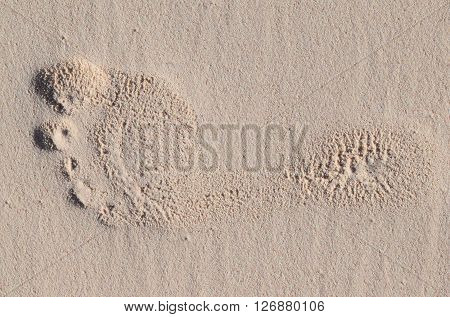Photograph of a footprint in the sand