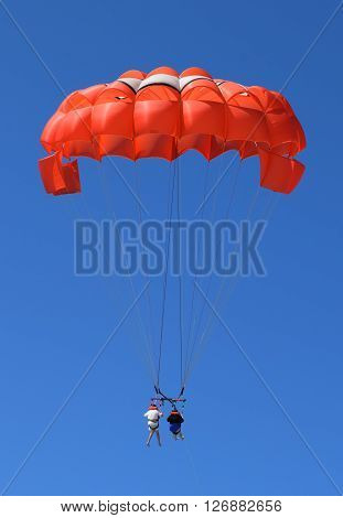 Photograph of people parasailing over the ocean