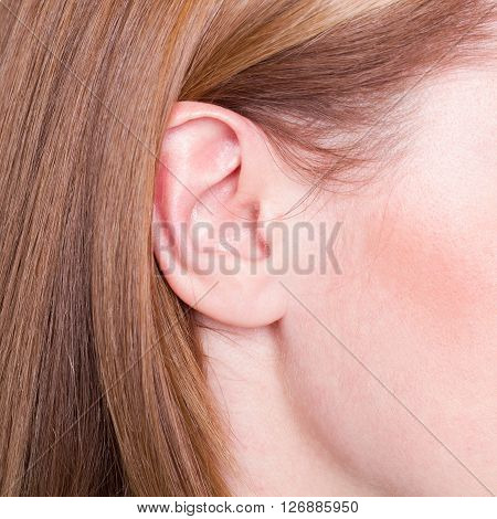 Picture of woman's ear close up with hair