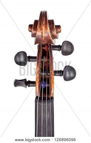 Top View Of Violin Pegbox And Pegs