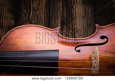 Close View Of A Violin Strings And Bout