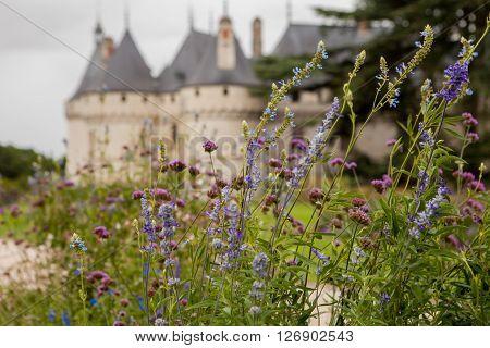 Chaumont On Loire Castle Chaumont Castle In France