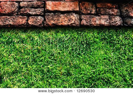 Stone pavement and grass field