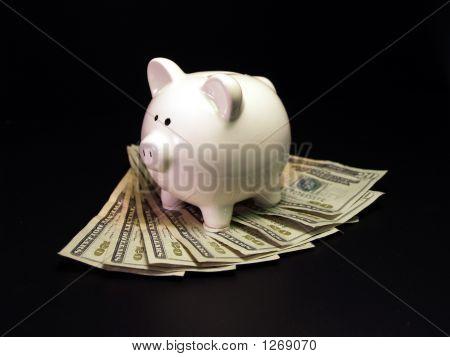 Piggy Bank On Twenty Dollar Bills
