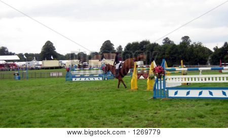 Competor Practicing Showjumping/Warming