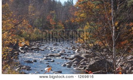 A River In The Fall Foliage
