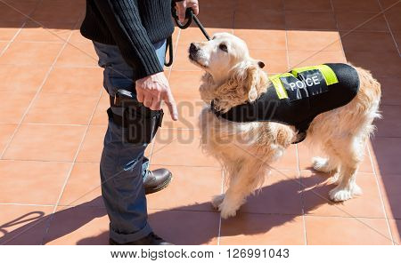Dog and police officer with his gun and badge