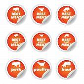 stickers set - pork poultry beef, orange color poster