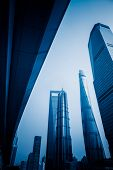Shanghai Tower, world Financial Center and Jin Mao Tower,tallest buildings in shanghai poster