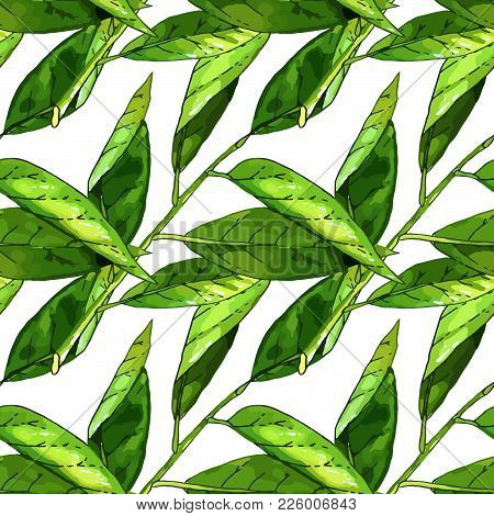 Hand Drawn Branch With Green Leaves Seamless Pattern