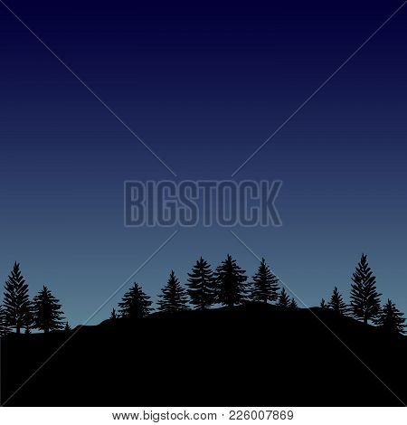 Night Forest Trees Silhouettes Background