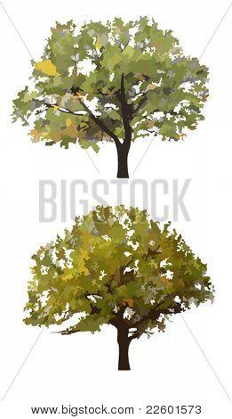 Vector autumn trees