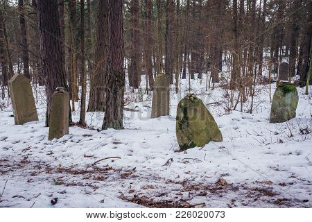 Narewka, Poland - January 26, 2018: Gravestones On Old Jewish Cemetery In Narewka, Small Village In