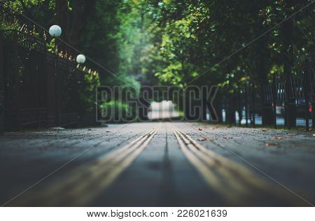 Shallow Depth Of Field Photo Shooting Of Park Walkway With Guide Tactile Paving Tiles For Blind Peop