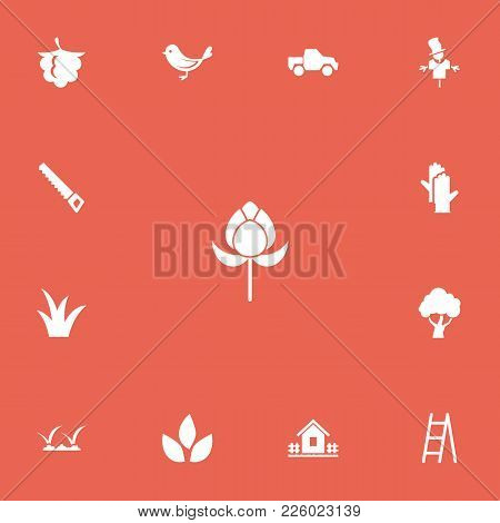 Set Of 13 Editable Agriculture Icons. Includes Symbols Such As Hacksaw, Scarecrow, Bird And More. Ca