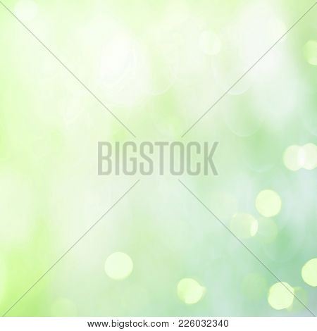 Amazing Springtime Background. Delicate Beautiful Abstract Green White Backdrop With Light Spot. Sof