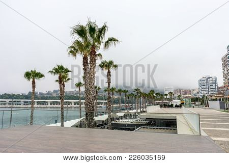 Palm Trees Along The Malagueta Beach In Front A Fog Covered Hill In Malaga, Spain, Europe
