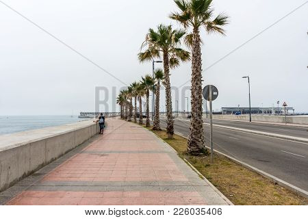 Tall Palm Trees Along The Malaguera Beach With Sea In The Background In Malaga, Spain, Europe