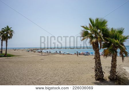 Tall Twin Palm Trees Along The Malagueta Beach With Ocean In The Background In Malaga, Spain, Europe