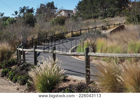 Curving Urban Paved Trail With Wooden Railing Goes Uphill Through Fountain Grass Xeroscape Landscapi