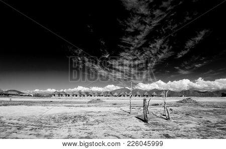 Cirrus Clouds Above Cerritos Beach - Baja California - Mexico - Black And White