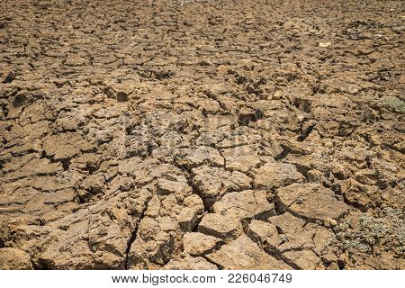 Dry And Cracked Ground In Tay Nguyen, Central Highlands Of Vietnam