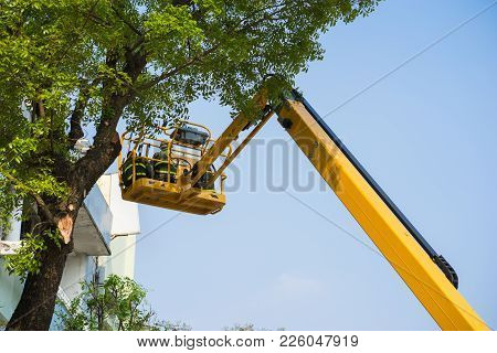 Tree Pruning By Workers With A Chainsaw, Standing On A Mechanical Platform, On High Altitude In Hano