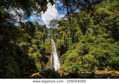 Beautiful small waterfall in green jungle, Costa Rica. Central America