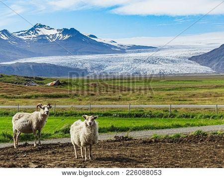 Vatnajokull Iceland S Largest Glacier On The Island Glacier Provides Water Ice Lagoon Jokulsarlon