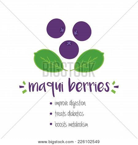Benefits Of Maqui Berries With Doodle, Hand Drawn Illustration Isolated On White Background.