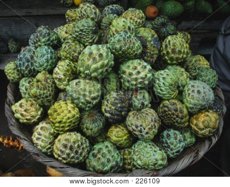 a basket of custard apples or anonas poster