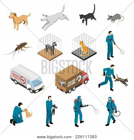 Animal Control Service, Catching Of Stray Dogs And Cats, Fighting With Pests Isometric Set Isolated