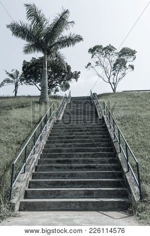 Steps Staircase Hillside Aged Photo